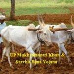 Application Form Mukhyamantri Kisan & Sarvhit Bima Yojana
