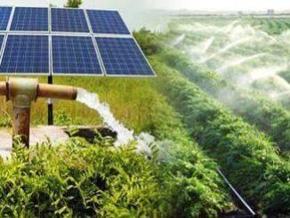 Rajasthan Solar Pump Krishi Connection Yojana
