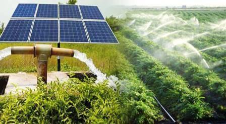 Rajasthan Solar Pump Krishi Connection Yojana