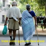 पंजाब वृद्धावस्था पेंशन योजना एप्लीकेशन फॉर्म 2020| Punjab Vridhavastha Pension Yojana