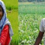 Deendayal Upadhyay Kisan Sahkarita Kalyan Yojana Uttarakhand   पंडित दीनदयाल उपाध्याय सहकारिता किसान कल्याण योजना