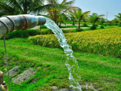 Farmers Free Energy Efficient Pump Sets Scheme in Andhra Pradesh