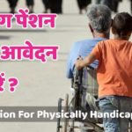 Application Form Viklang Pension Yojana Haryana