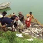 Telangana Fisheries Development Scheme (IFDS)