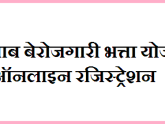 Berojgari Bhatta Punjab online registration