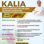 kalia yojana odisha 2019