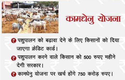 Pradhan Mantri Kamdhenu loan Scheme