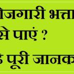 हरियाणा बोरोजगारी भत्ता योजना | Online Form Berojgari Bhatta Yojana Harayana