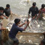 सागर मित्र योजना एप्लीकेशन फॉर्म 2020 |Sagar Mitra Yojana 2020